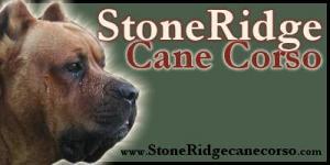 StoneRidgeCaneCorso